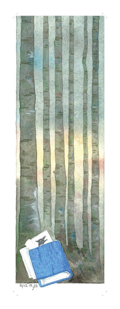 immagine verticale